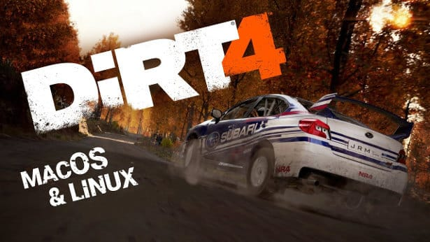 DiRT 4 rally racing launches support today
