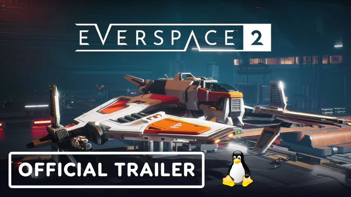 everspace 2 linux support is planned beside windows pc