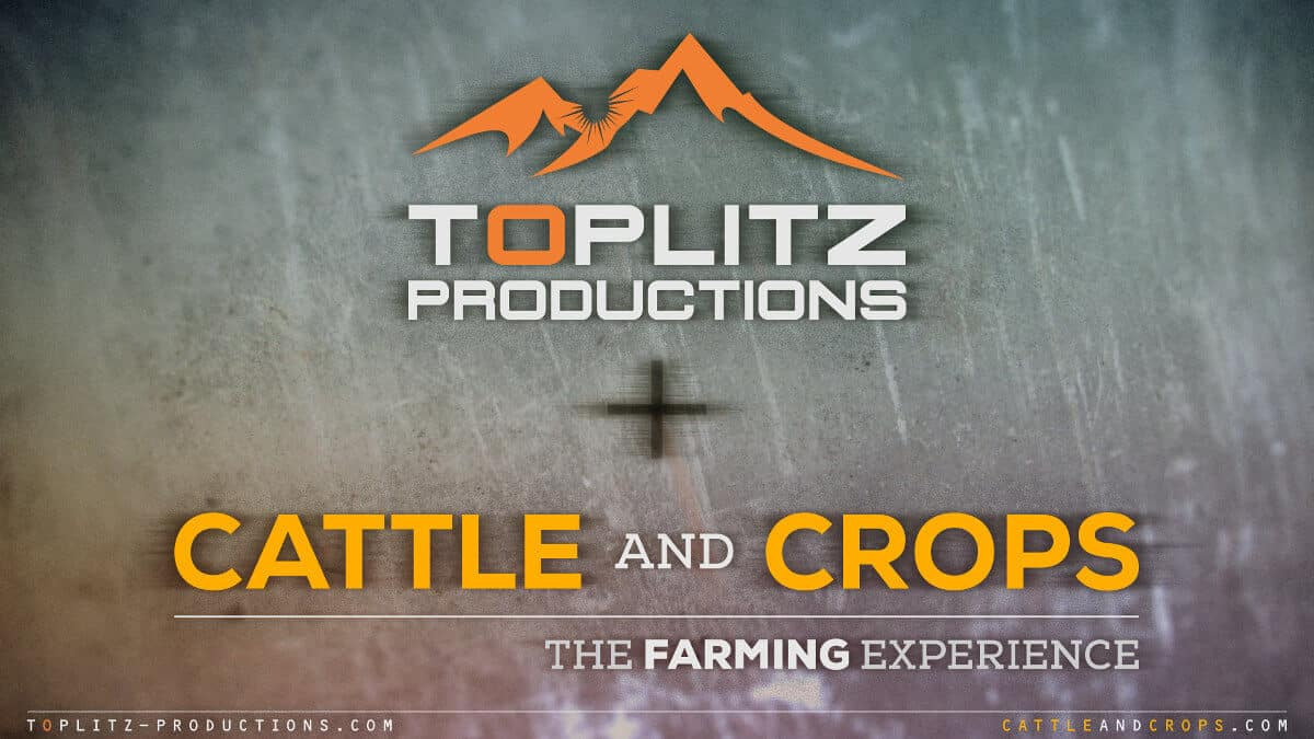 Cattle and Crops farming game nearing a full release for linux windows pc